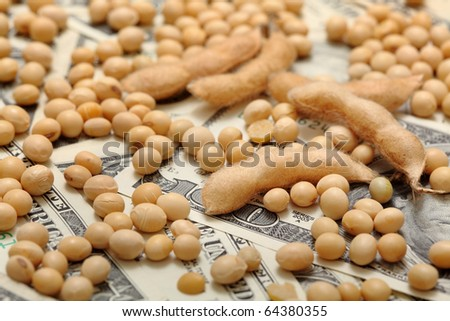 Agricultural concept, soy bean at dollar banknote - stock photo