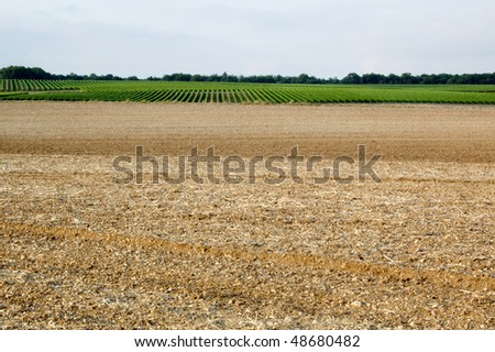 agricultural field - stock photo