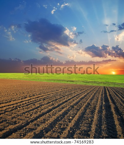 agricultural field and sunset - stock photo