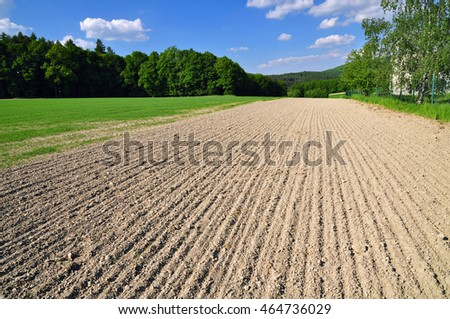 Agricultural field in summer, rustic land soil.