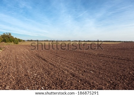 Agricultural field with soil and blue sky