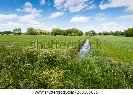 Agricultural grassland on a sunny day in springtime. In the foreground a field edge with white flowering cow parsley and other wild plants. - stock photo