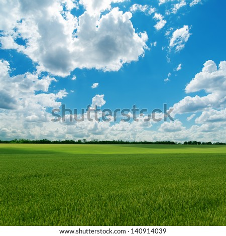 agricultural green field and cloudy sky - stock photo
