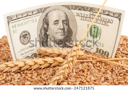 Agricultural income concept - stock photo