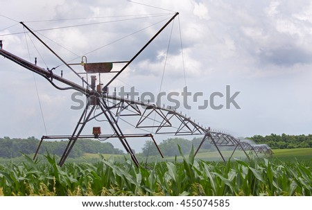 Agricultural irrigation system watering a corn field