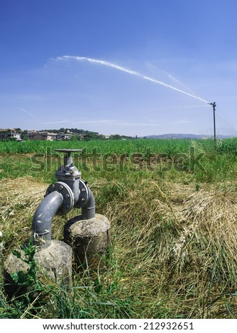 Agricultural irrigation systems. Sprinkler and tubes - stock photo