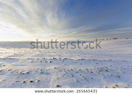 Agricultural land windy winter evening - stock photo