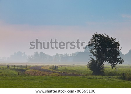 agricultural landscape in morning mist - stock photo