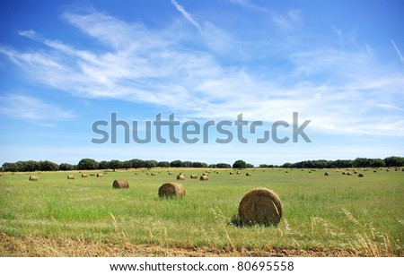 Agricultural landscape of hay bales in a field - stock photo
