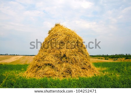 Agricultural landscape of stack hay - stock photo