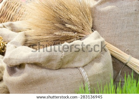 Agricultural product assortment, cereals in sacks and barley straws in bundle - stock photo