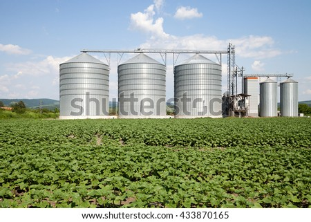 Agricultural Silo, foreground sunflower plantations - Building Exterior, Storage and drying of grains, wheat, corn, soy, sunflower against the blue sky with white clouds