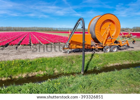 Agricultural spraying equipment pumping water from ditch to tulips flowers - stock photo