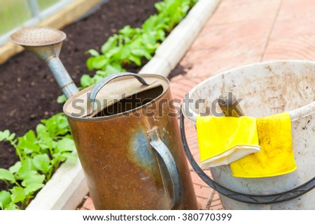 Agricultural tools in a greenhouse. Watering can, bucket, yellow rubber gloves