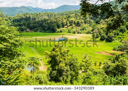 Agricultural view at Chiangmai province, Thailand, - stock photo