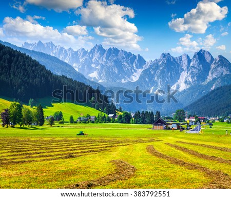 Agricultural work in the fields in the valley of the Austrian Alps. Summer sunny day in the Gosau village on the Grosse Bischofsmutze mountain range, Alps, Austria, Europe