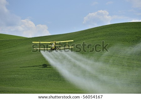 Agriculture: a low flying yellow biplane crop duster sprays a farm field in the Palouse region, Washington, U.S.A.. - stock photo