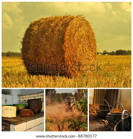 Agriculture and rural life - stock photo