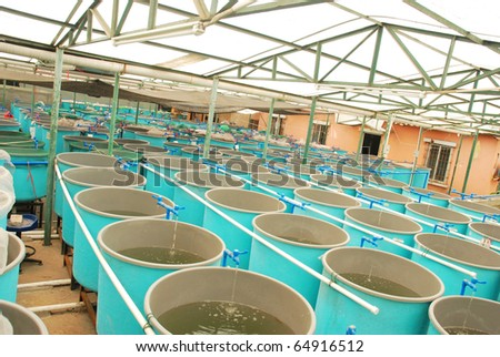 Agriculture aquaculture water system farm - stock photo