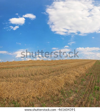 agriculture field after harvesting and clouds over it.