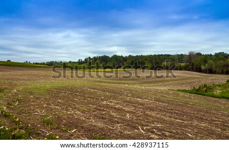 agriculture field at spring landscape
