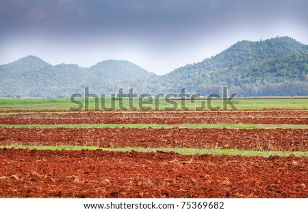 Agriculture field in front of blue sky and mountain scenery. - stock photo