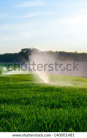 agriculture field watering - stock photo