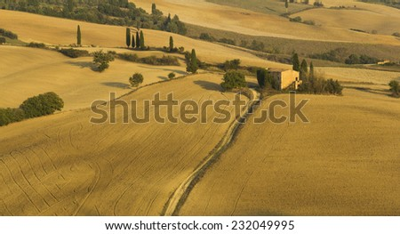 Agriculture fields in Tuscany during autumn