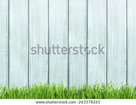 Agriculture. Fresh spring green grass and leaf plant over wood fence background - stock photo