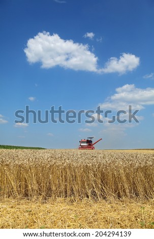 Agriculture, harvesting of wheat with combine in field, focus on wheat - stock photo