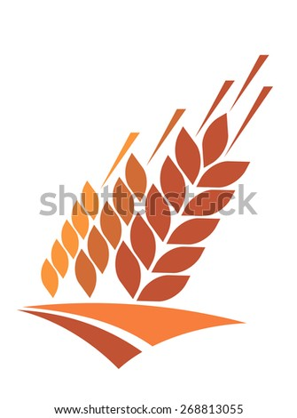 Agriculture icon with a field of golden ripe ears of wheat providing a staple dietary grain and animal feed - stock photo