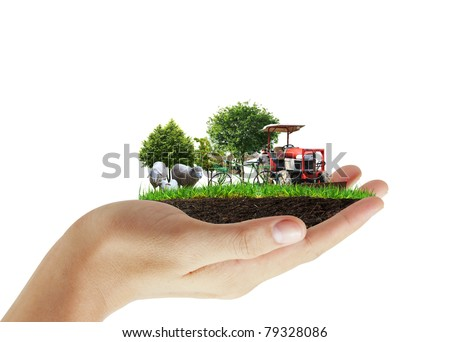 Agriculture in the hand - stock photo