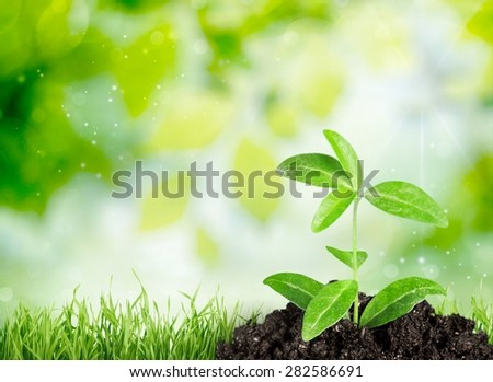 Agriculture, Life, Dirt. - stock photo