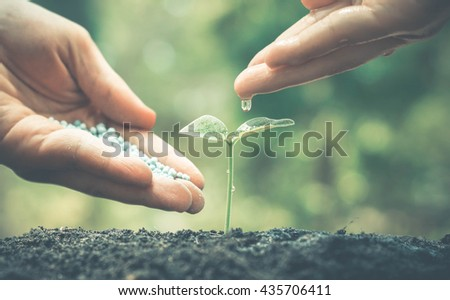 Agriculture / Nurturing baby plant / protect nature / planting tree - stock photo