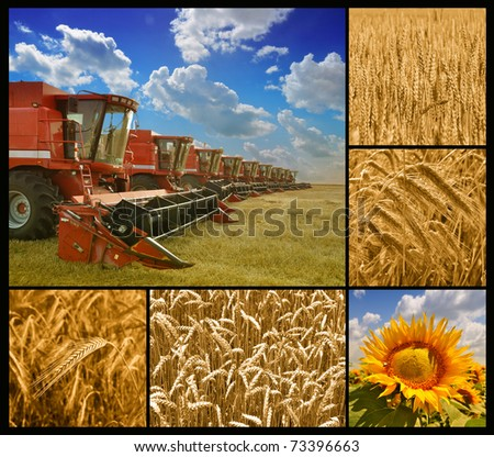 Agriculture - ready to work - combine harvester and crop details - stock photo