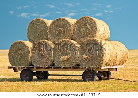 Agriculture straw wagon in farm field - stock photo