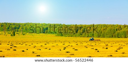 Agriculture tractor in yellow field - stock photo