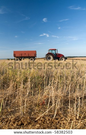 Agriculture - tractor on the field with harvested corn