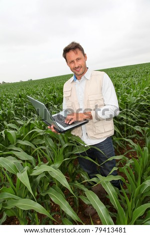 Agronomist analysing cereals with laptop computer - stock photo