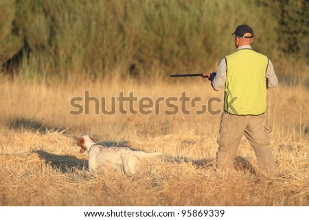 Agustin Romain (pointer and english setter trainer) hunting with pointer and shotgun - stock photo