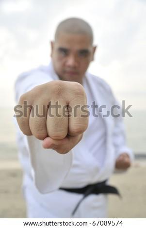 Aikido man doing a punch - stock photo