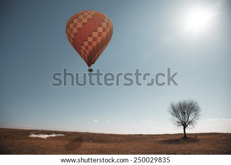 Air balloon flying over the steppe with single tree - stock photo