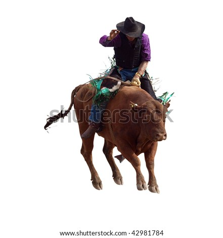 Airborne on a Bull isolated with clipping path - stock photo
