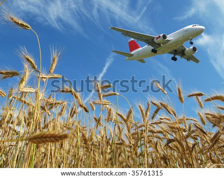Aircraft taking off over a wheat field - stock photo