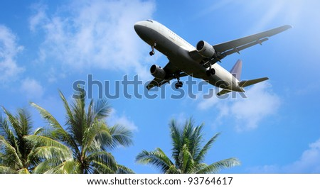 Airliner passing over palm trees - stock photo