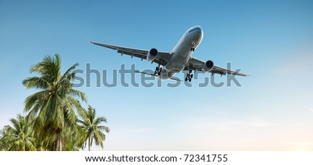 airplane flying over tropical palm trees - stock photo