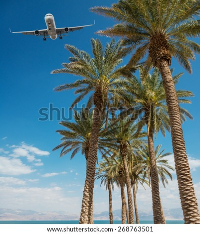 Airplane in blue sky over palm trees - stock photo