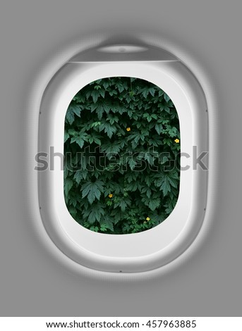 airplane window with leafs  - stock photo