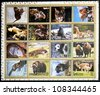 AJMAN- CIRCA 1972: A collection of sixteen stamps showing pictures of endangered animals, circa 1972 - stock photo