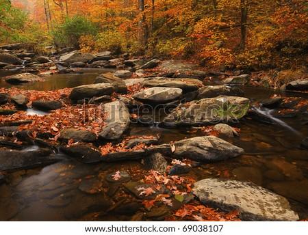 Alabama Stream - stock photo
